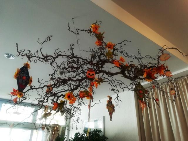 Der Herbst hat Einzug gehalten